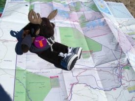 Globejotting mascot Sven Wondermoose will be joining us at all four gatherings to pose for photos and down a few shots.