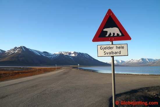 Trained local guides carry rifles whenever they leave the center of Longyearbyen. While the chance of encountering a polar bear in July is low, getting eaten could put a damper on your vacation.