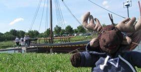 Wimpy Vikings