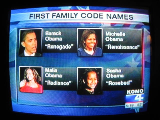 Barack Obama's Family <s>Tree</s> <s>Bush</s> <s>Splatter</s ...