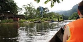 Losing Autofocus: A Fraction of a Second in Borneo