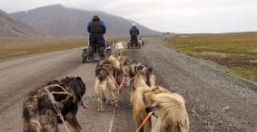 More from Svalbard