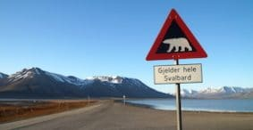 Welcome to Svalbard: The Northernmost Year-Round Settlement on the Planet