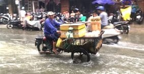 Two Kinds of Flooding: Bùi Viện Street's Halloween Mayhem